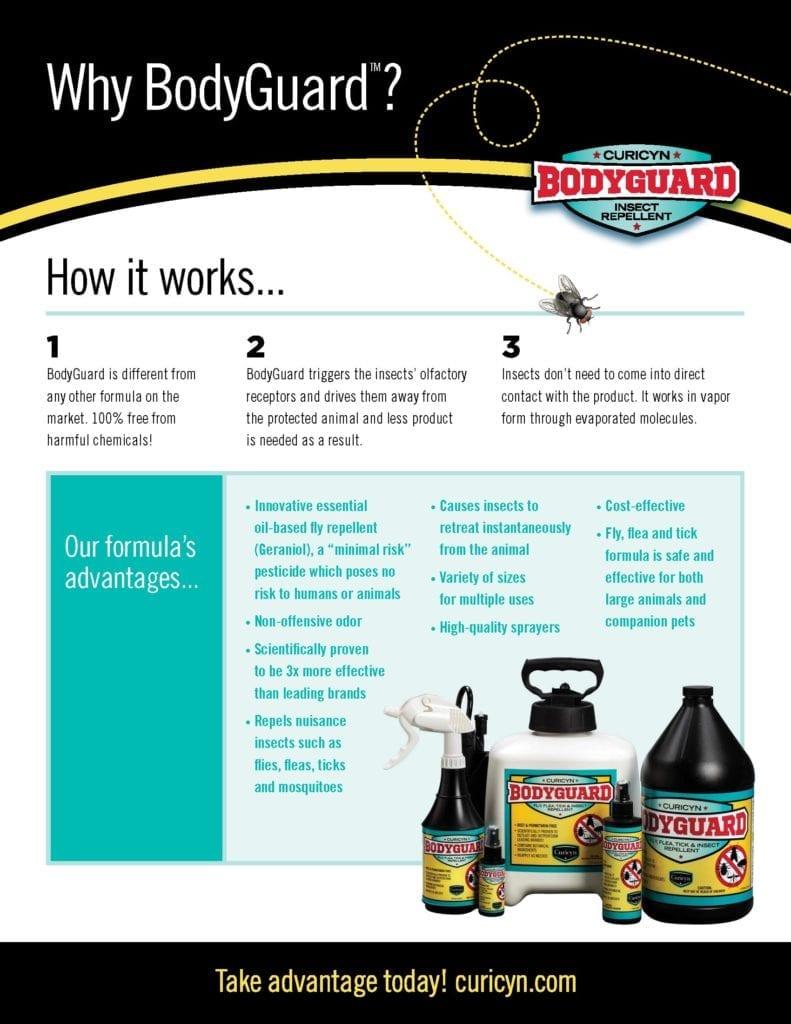 BodyGuard Fly Spray