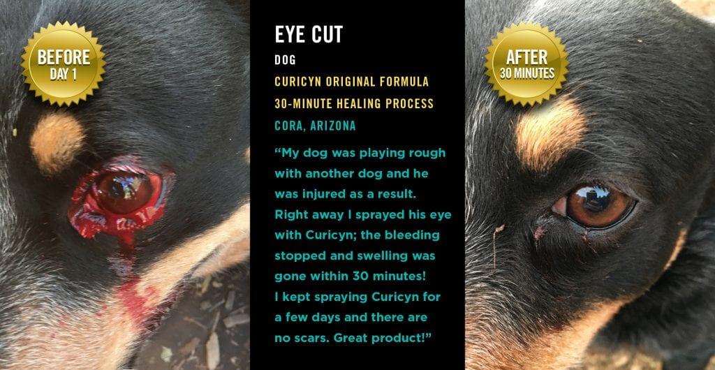 Testimonials: Eye Cut