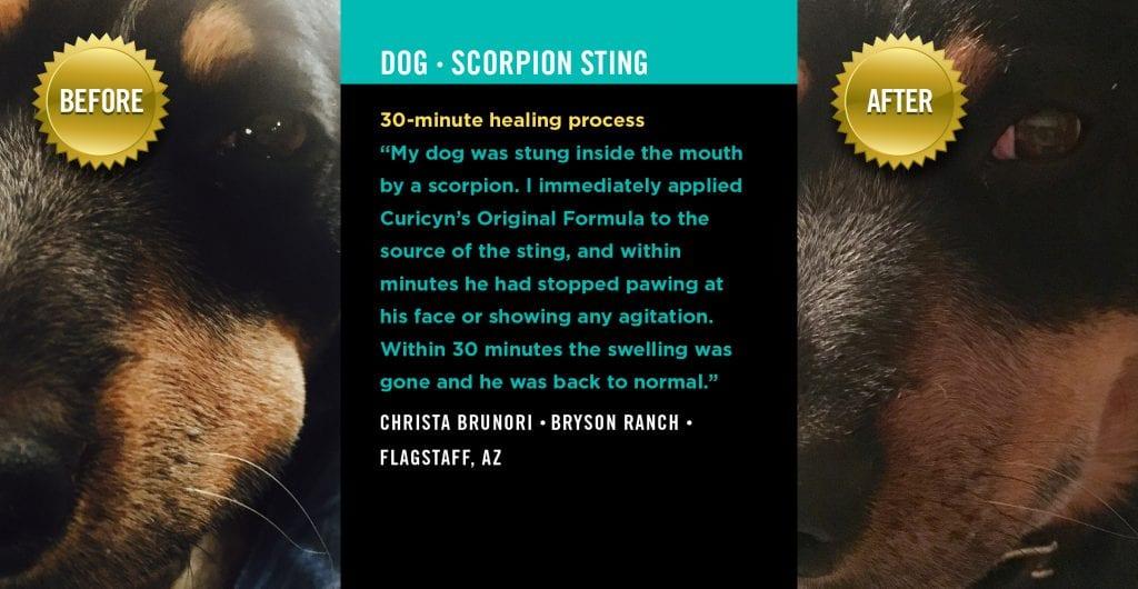 Testimonials: Scorpion Sting