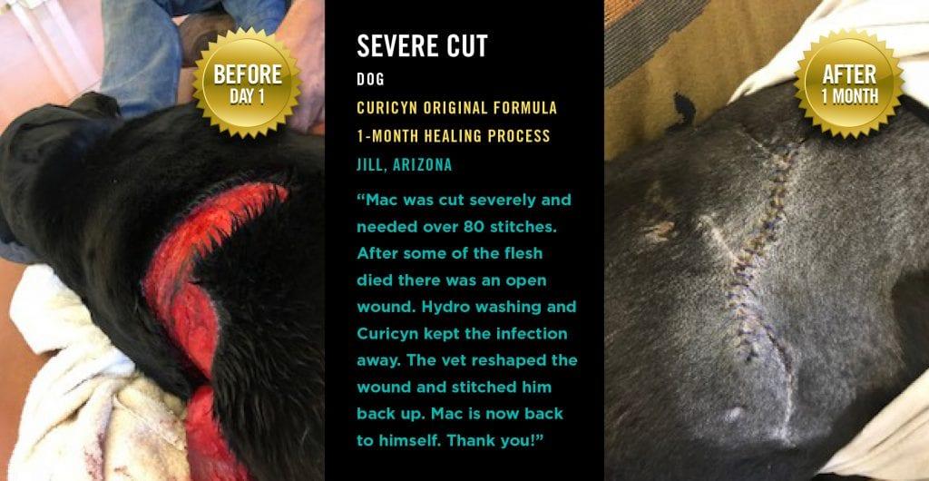Severe Cut