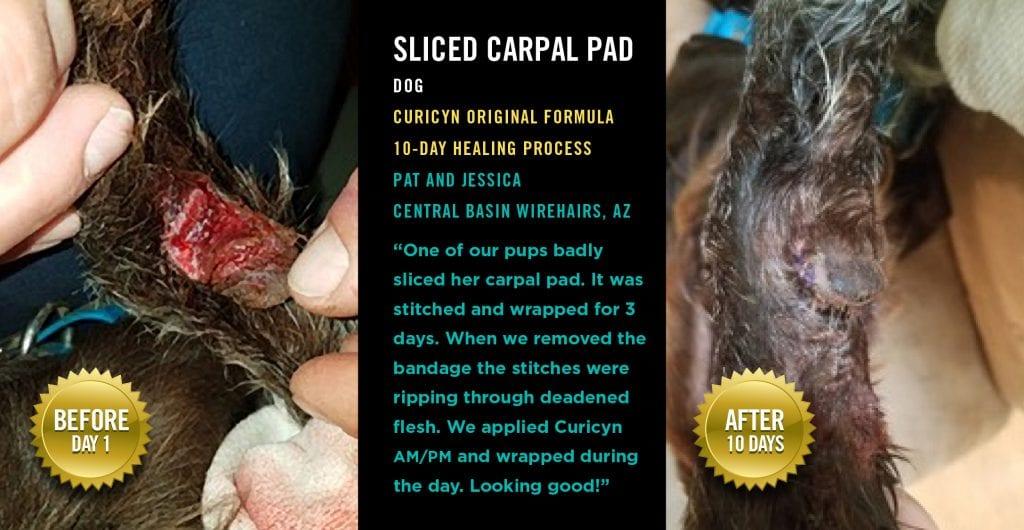 Testimonials: Sliced Carpal Pad